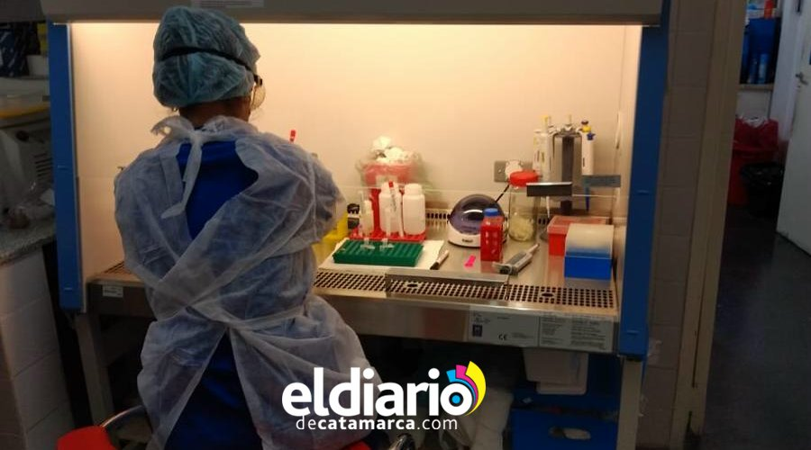 test coronavirus catamarca laboratorio